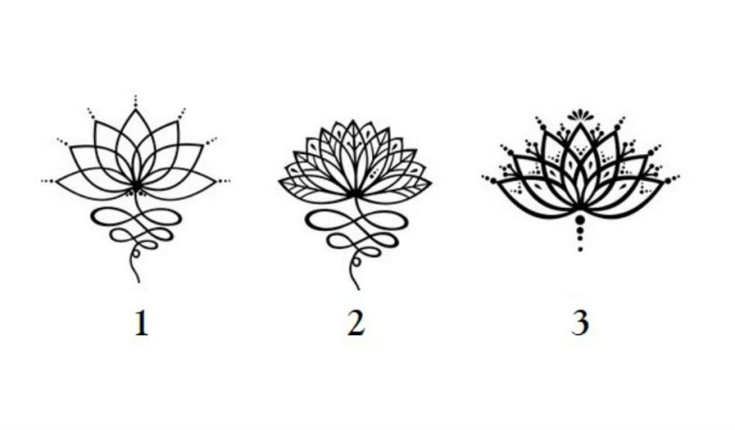 Choose a Lotus To Get a Message That Will Brighten Your Future