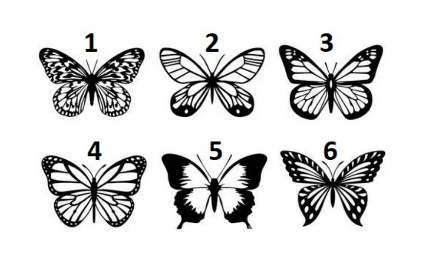 Pick a Butterfly to Get a Message to Divine Yourself