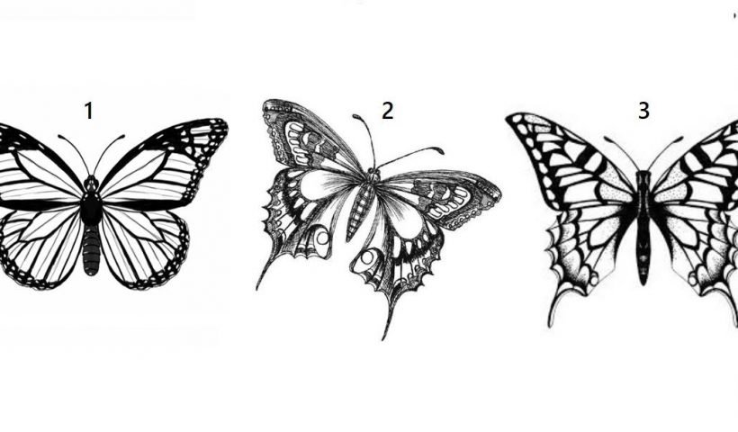 Choose a Butterfly to Get a Special Message From Spirit