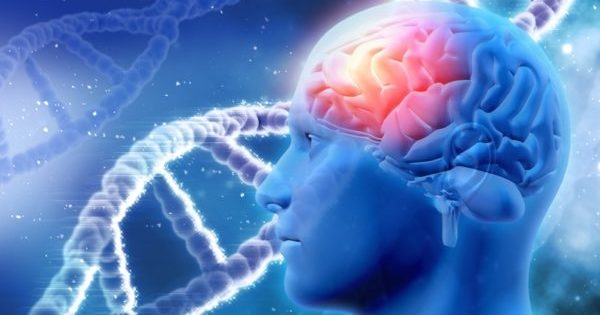 Scientists Prove DNA Can Be Reprogrammed By Our Own Words