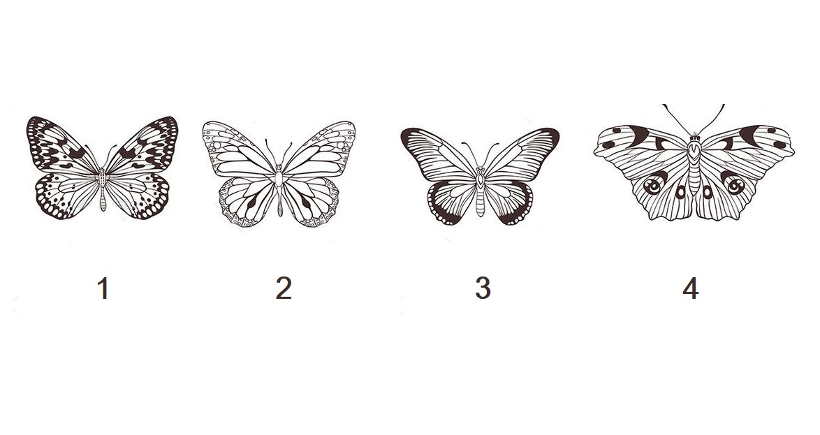 Pick one Butterfly to Get a Spiritual Psychic Message