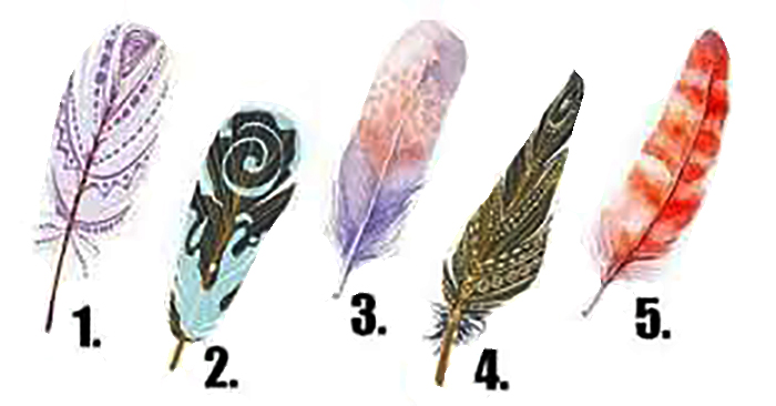 Choose a Feather To Get a Tarot reading