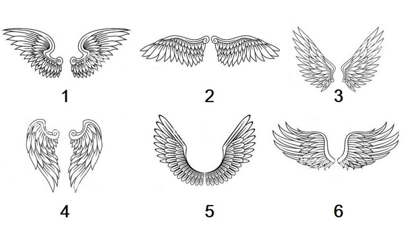 Pick a Pair of Wings To Receive Guidance Message