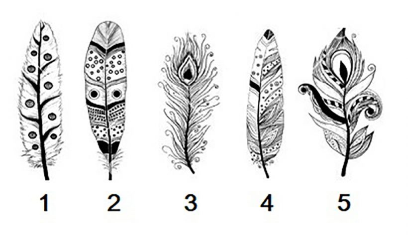 Pick a Feather to Reveal Your Psychic Message