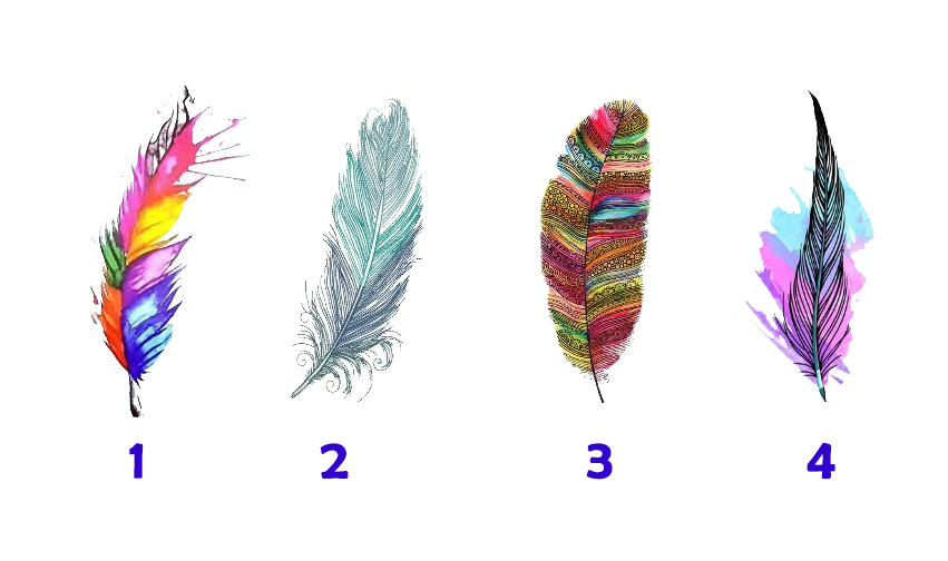 Pick a Feather to Receive Prophetic message