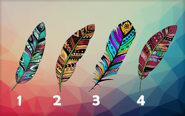 Pick a Feather To Find Out What to Focus this Period