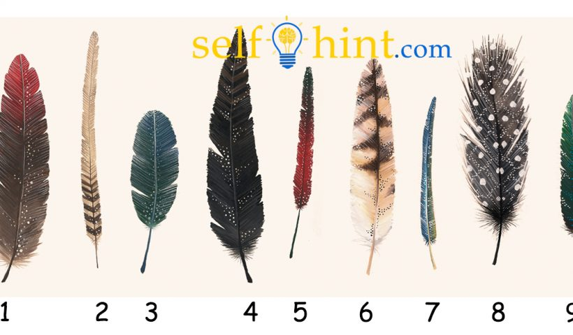 Pick a Feather To Get a General Reading